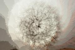 Juniper-Mandala-5